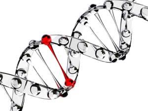 genotoxisch carcinogeen